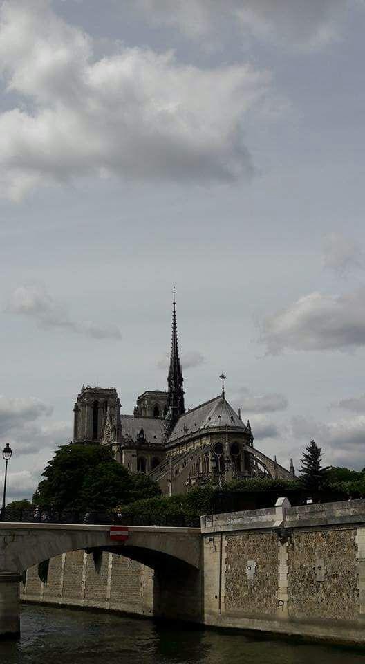 Paris Notre Damme Katedrali