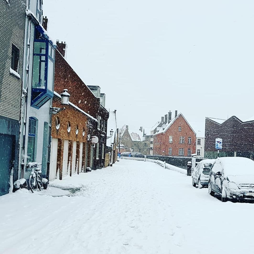 Brugge Kış Manzarası