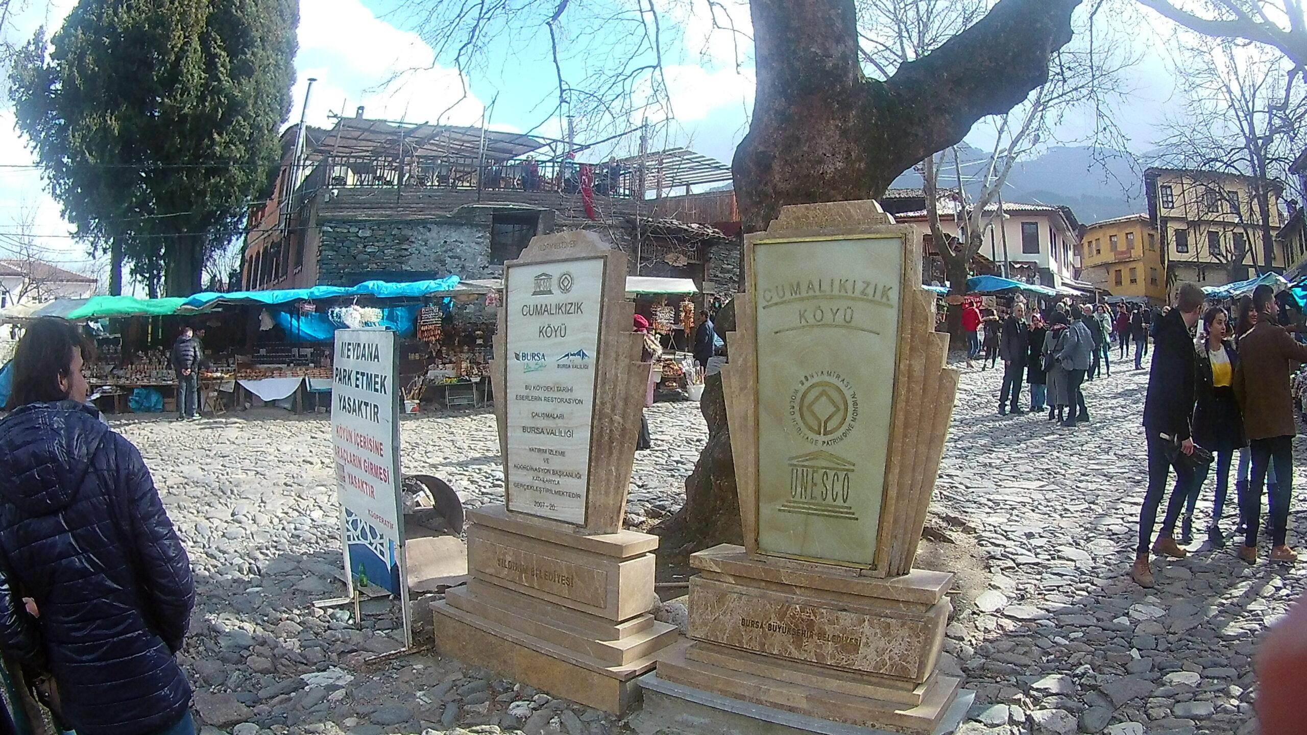 Köy Meydanı Anıt Ağaç