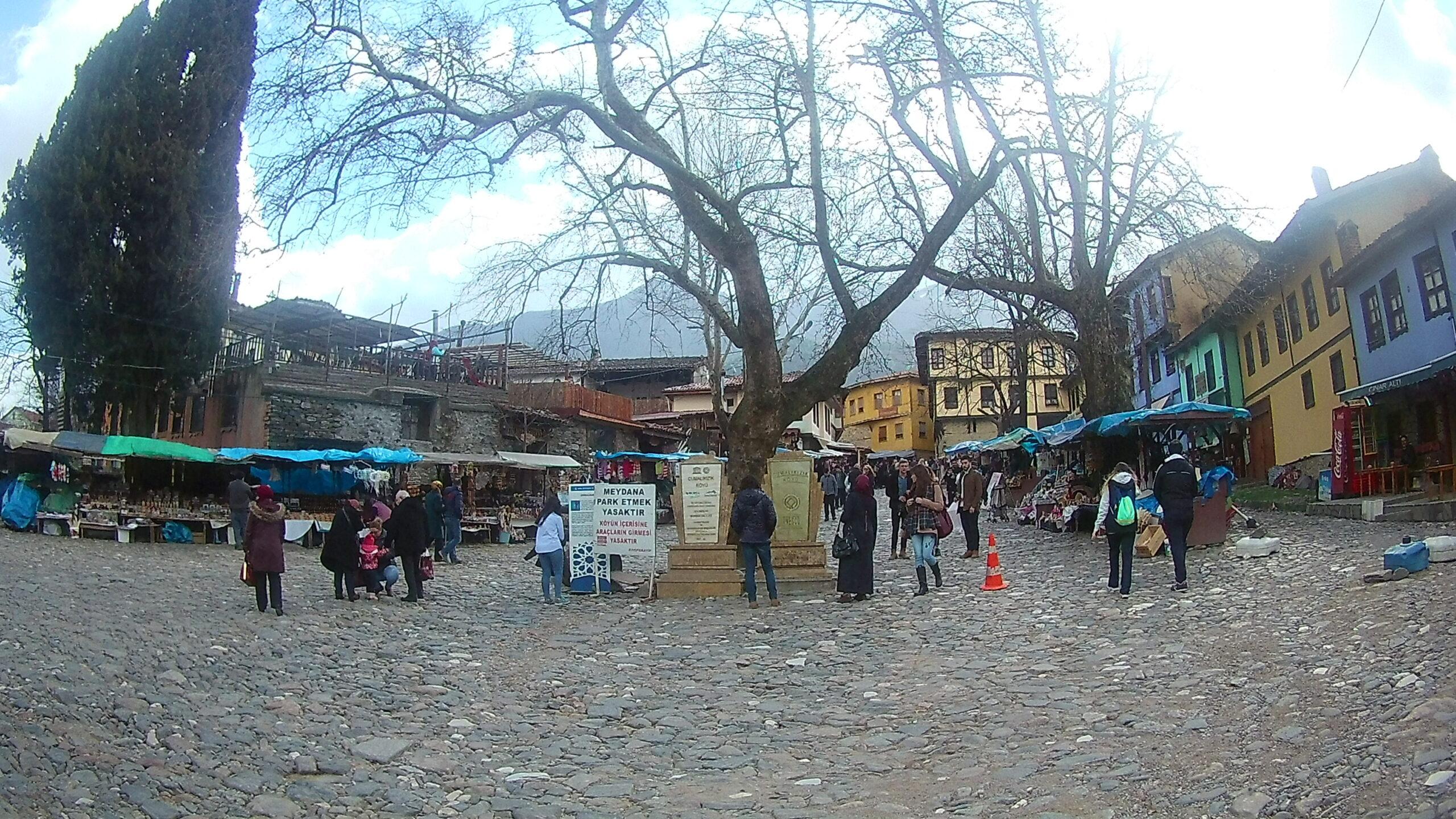 Cumalıkızık Meydanı Anıt Ağac