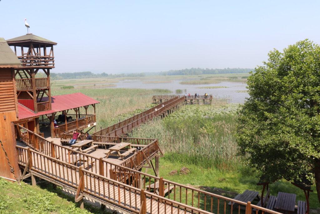Düzce Efteni Gölü