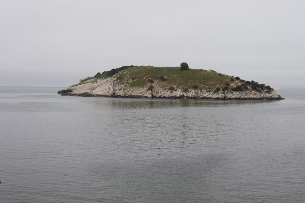 Tavşan Adası