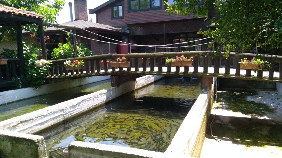 Cansu Alabalık Havuzu