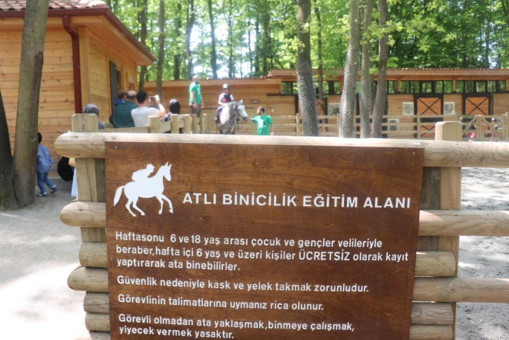 Atlı Binicilik Eğitim Alanı