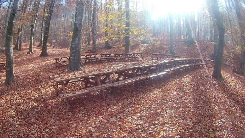 Suuçtu Şelalesi Piknik Alanı